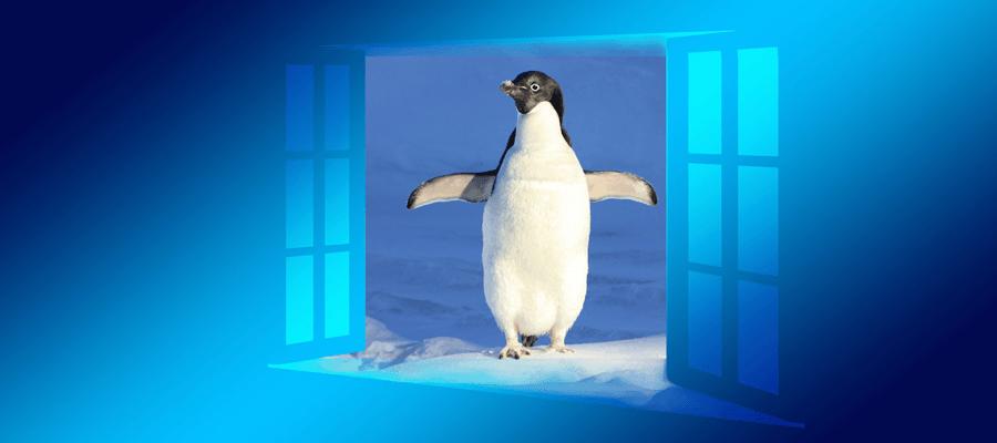 Neues bei Linux und Windows 10
