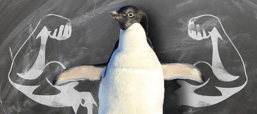 Linux System Hardening: Die 10 wichtigsten Tipps, um ein System abzusichern